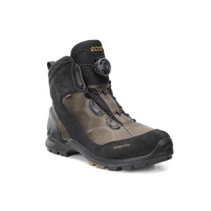 Ecco Biom Terrani Boa GTX, versione maschile, da trekking ed escursionismo