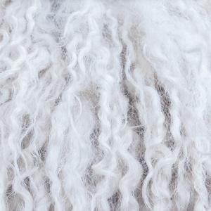 Tra gli obiettivi la copertura totale (100%) della domanda, con lana certificata RWS